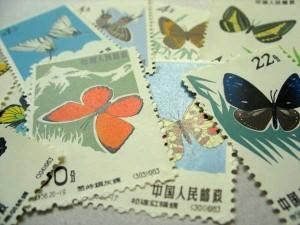 China_Schmetterlinge